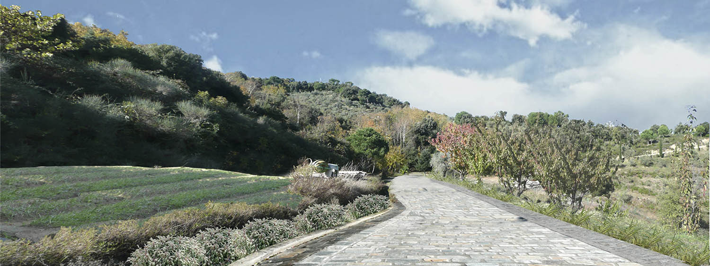 landscape_roidis_moni_karakalou_9