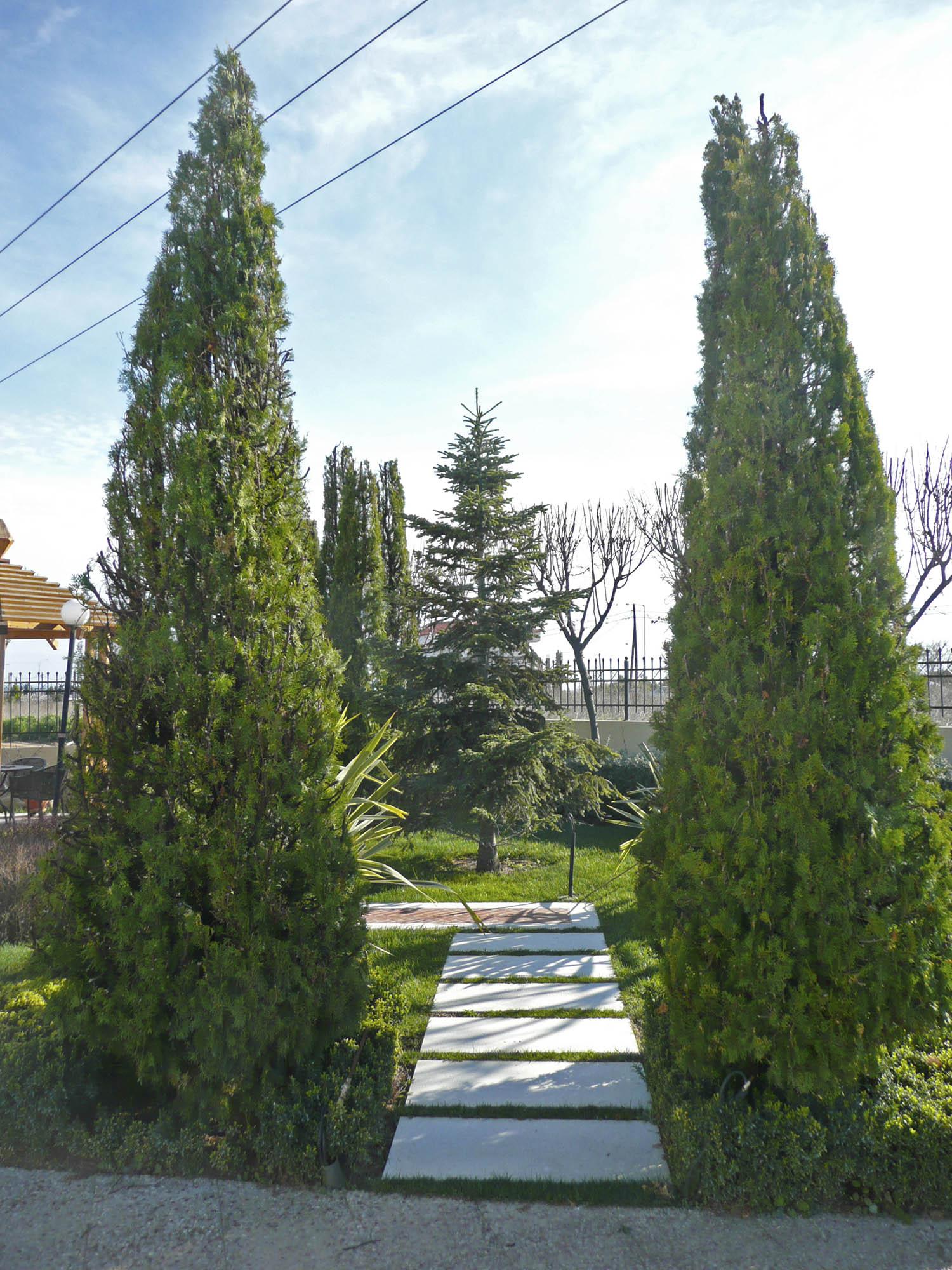 landscape_roidis_villa